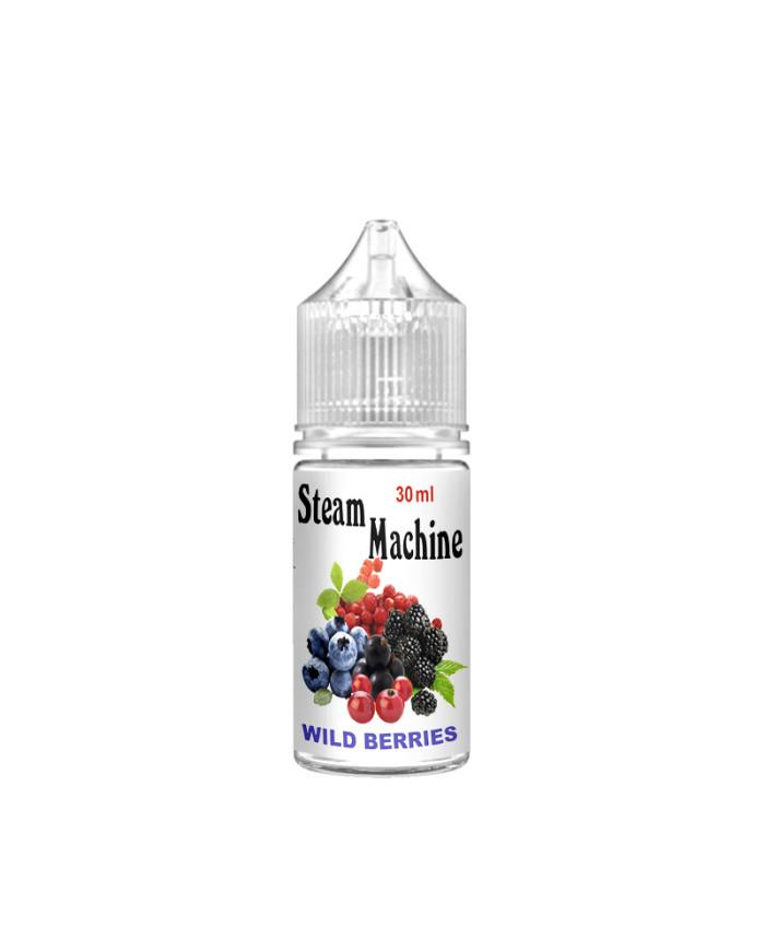Рідина Steam Machine Wild Berries 30 мл